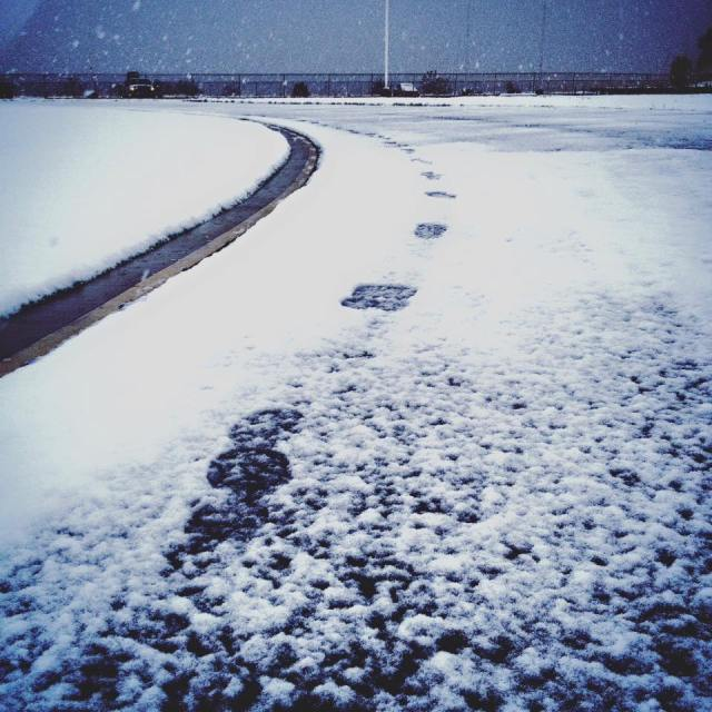 WinterTrack